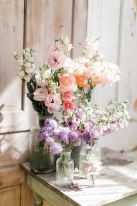 bloomcampaign2020-414.jpg