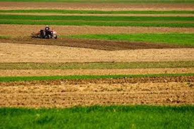 сельхоз земля.jpg