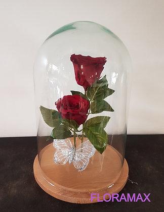 Double rose éternelle bordeaux