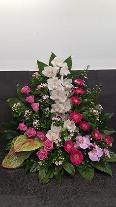 Pied de tombe Rose/Fuschia/Blanc (CN84)
