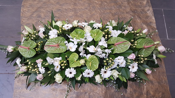 Coussin vert / Blanc (CN29)