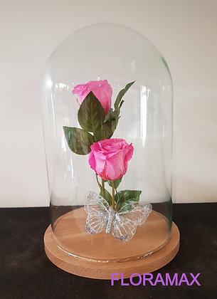 Double rose éternelle rose bonbon
