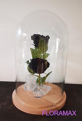 Double rose éternelle noire