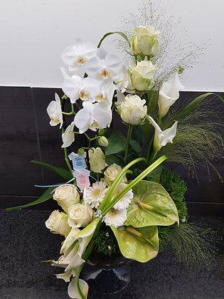 Magnifique montage d'orchidées
