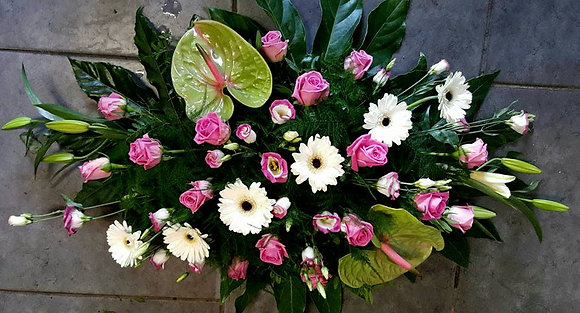 Coussin Rose / Blanc (CN41)