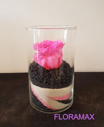 Rose éternelle rose bonbon