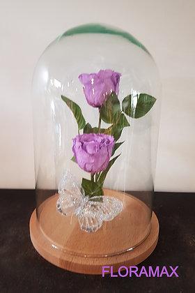 Double rose éternelle parme