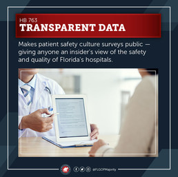 Patient Safety Culture Surveys
