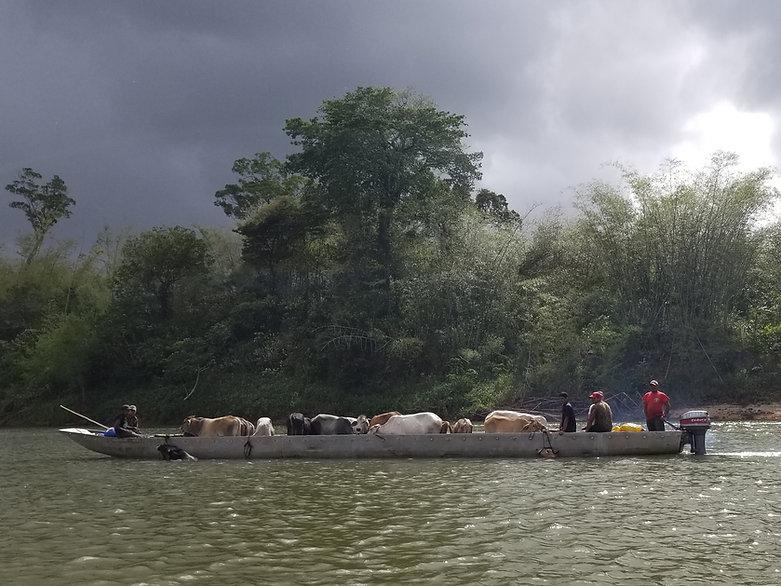 Alistair 50' canoe w Cargo.jpg