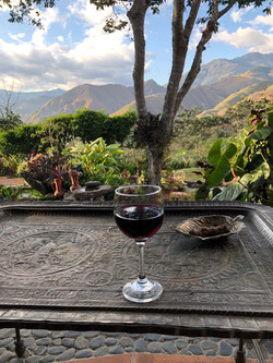 View with Wine
