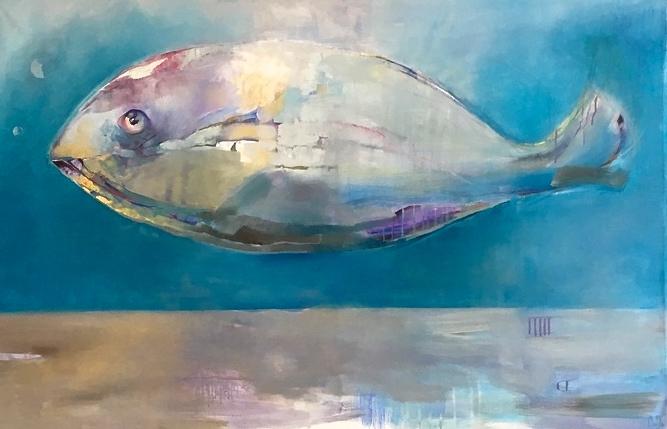 Bozo fish wondering (P.C/F)