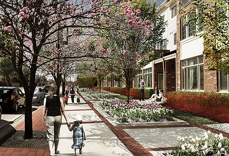 streetscape rendering- red twig.jpg