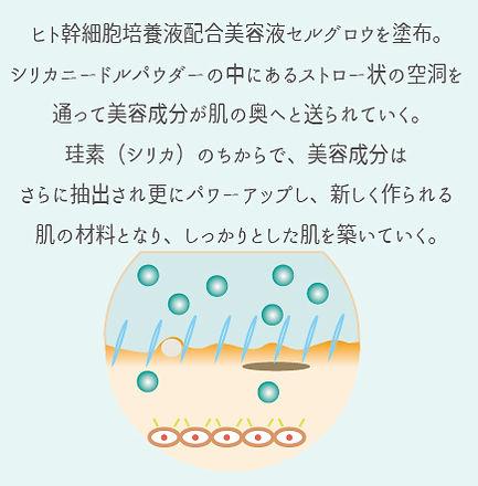 イラスト5.jpg