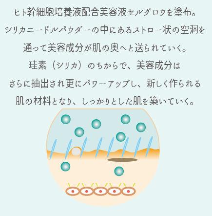 イラスト6.jpg