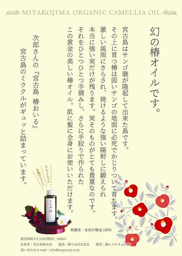 椿オイルちらし20191031.jpg