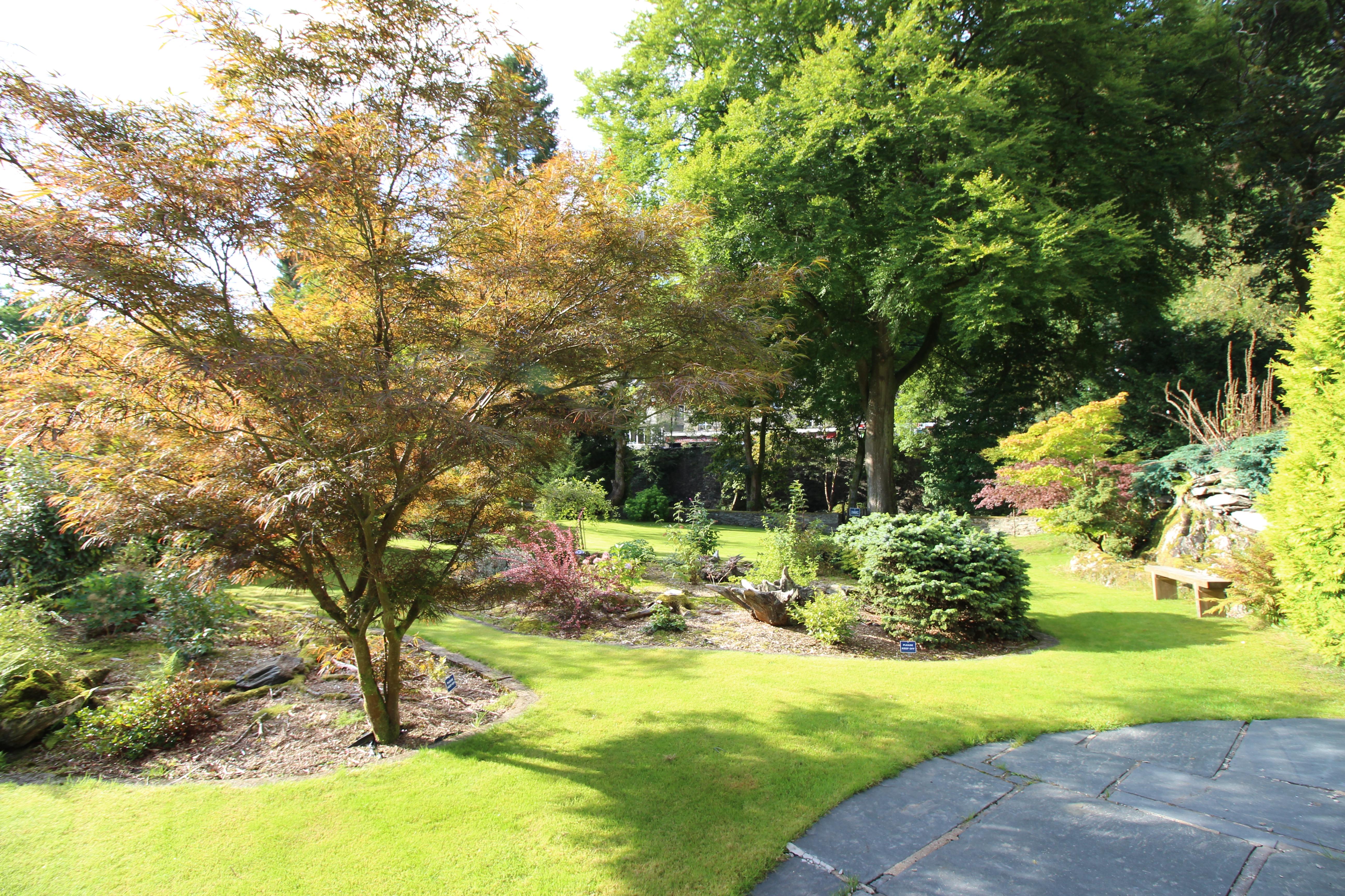 Swn-y-Dwr's landscaped garden 2