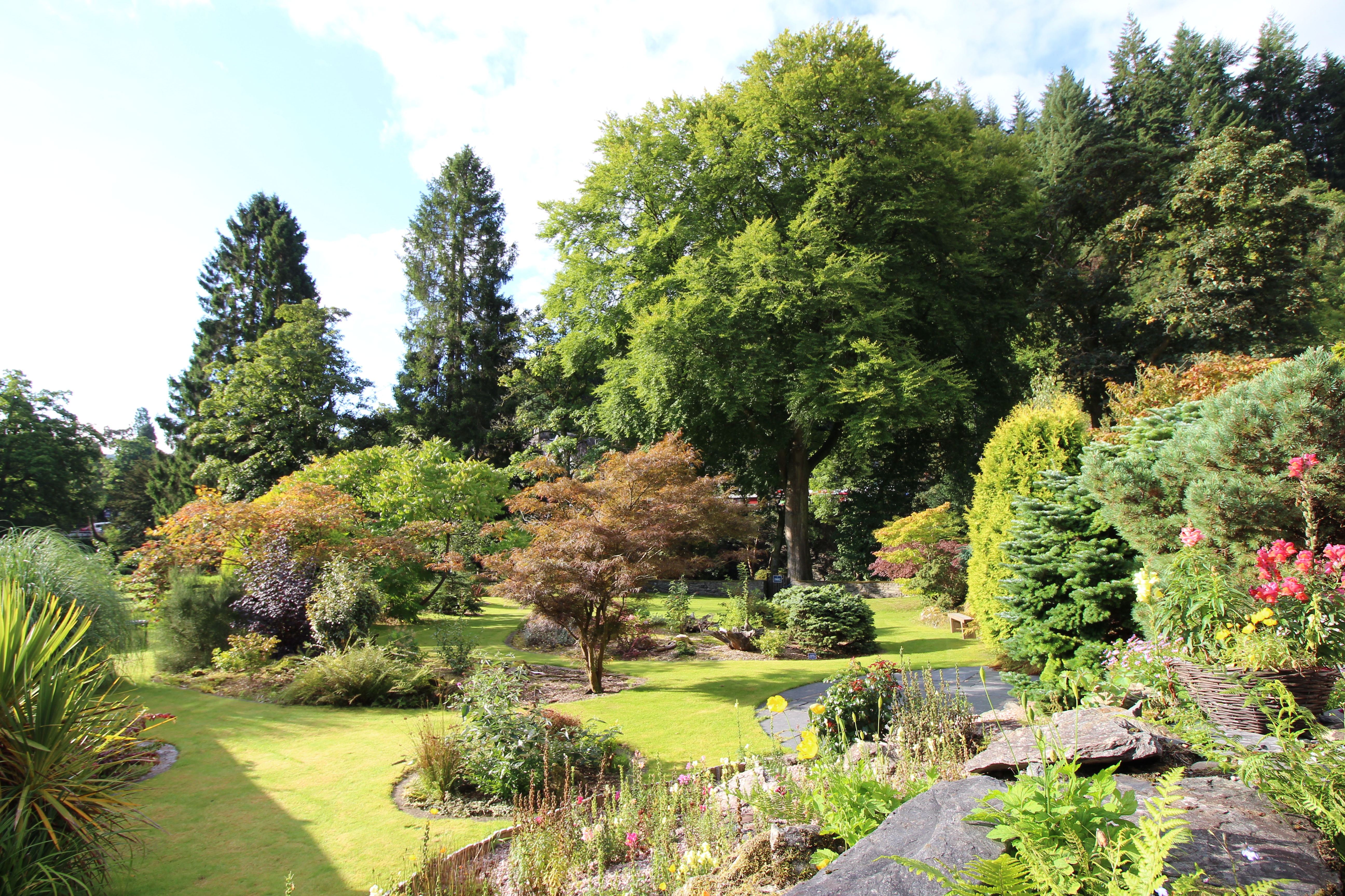 Swn-y-Dwr's landscaped garden 1