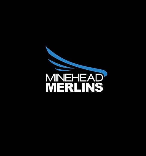 minehead-merlins-log.png