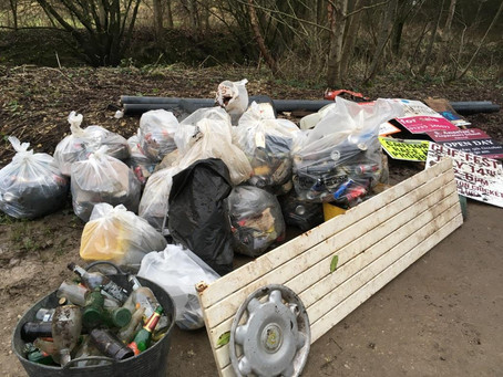 Some recent litter picking