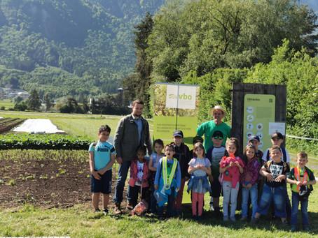 31.05.2021: Projektwoche Umwelt der Gemeindeschule Mauren-Schaanwald