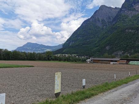 04.06.2021: Weltacker Balzers zeigt den Getreideanbau