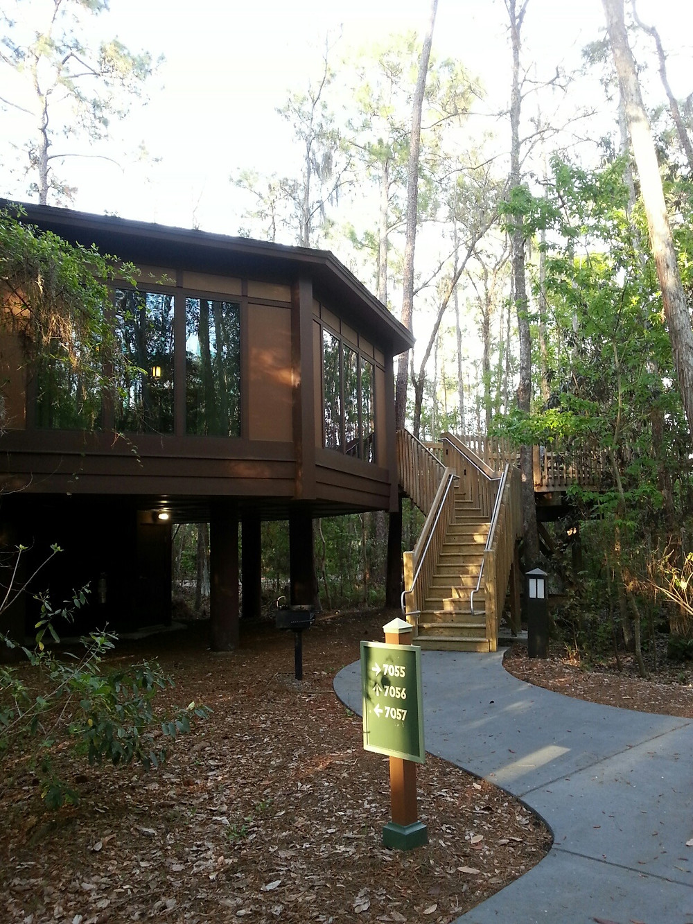 Treehouse Villa at Disney's Saratoga Springs Resort and Spa