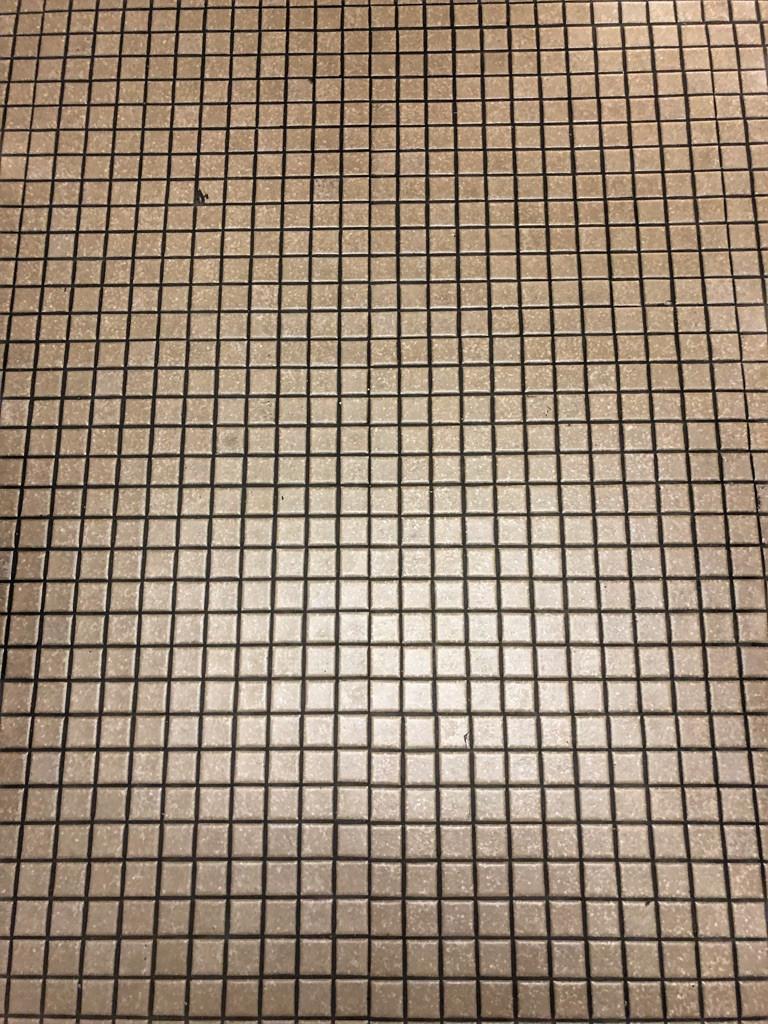 Tile Floor, Third Floor, The Contemporary Resort