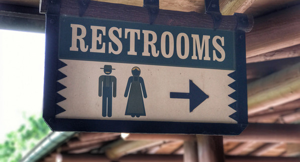 The Wildest Flush in the Wilderness!