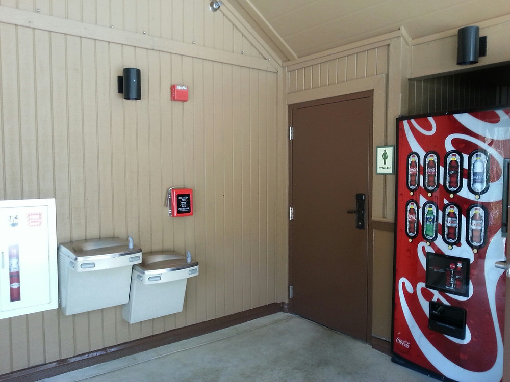Fountains and Cola:  More Incentive to Use the Loo at Saratoga Springs Treehouse Villas Pool