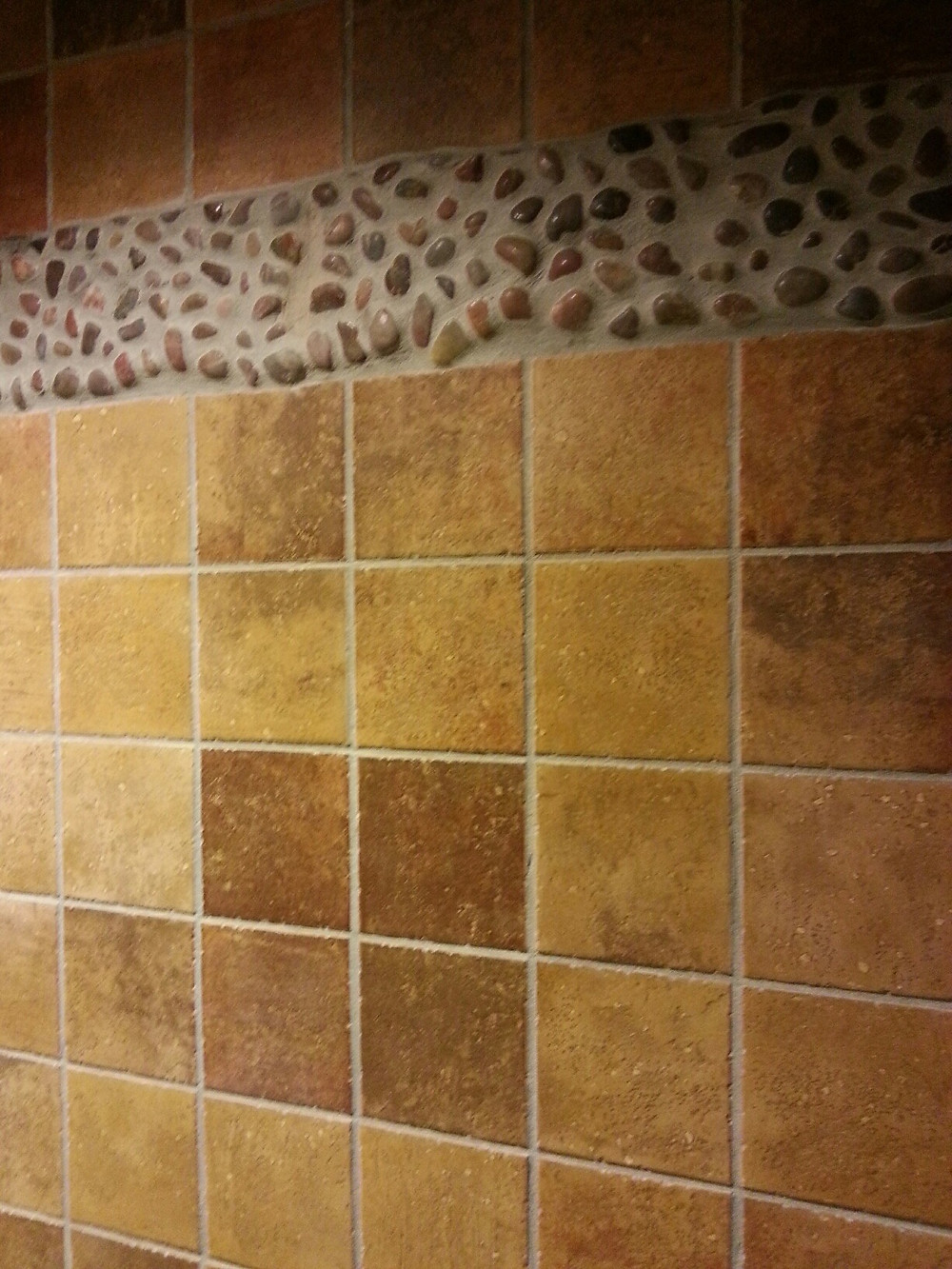 Wall Accent Strip Saratoga Springs Treehouse Villas Pool Restroom