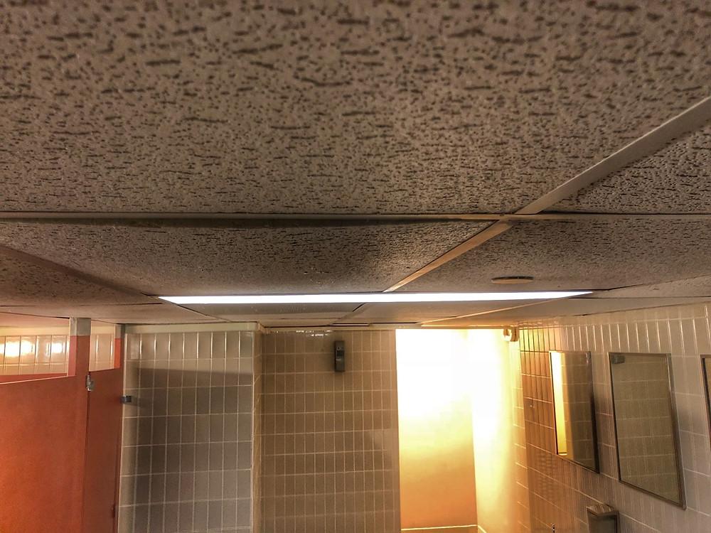 Drop Ceiling, Third Floor Restroom, The Contemporary Resort