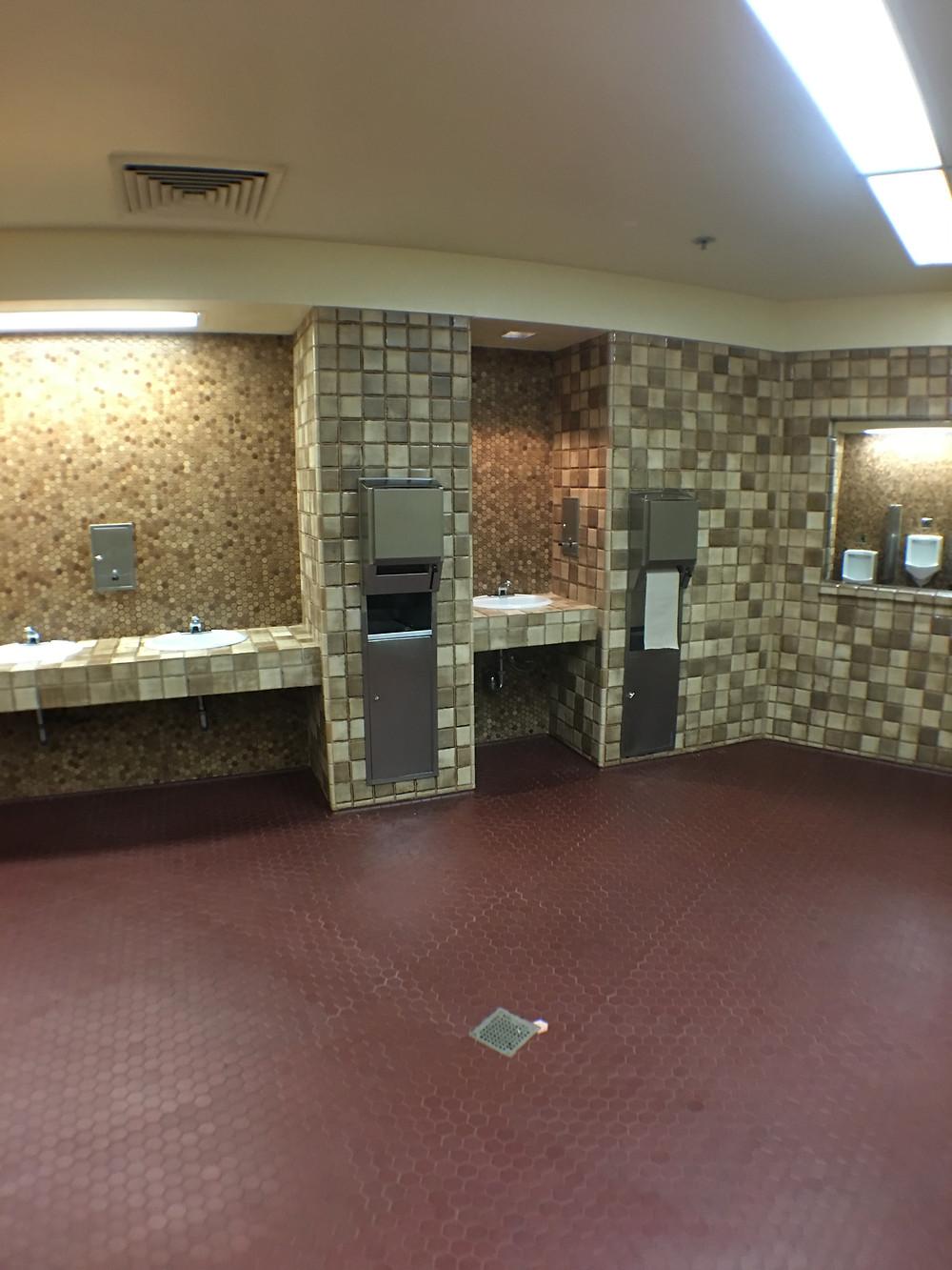 Sinks-a-Plenty Epcot Men's Room Odyssey Center