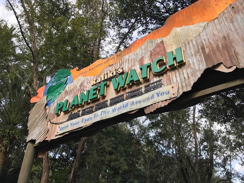 Entrance to Rafiki's Planet Watch
