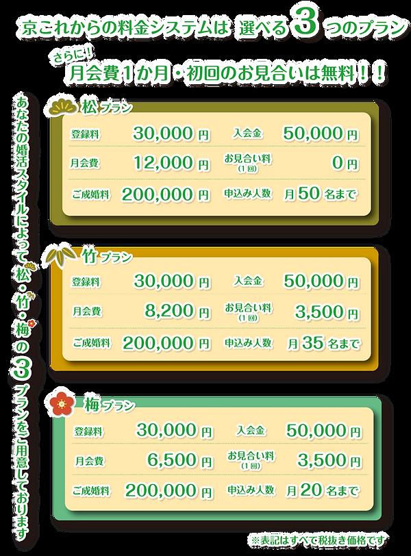 京これからの料金システムは選べる3つのシステム!