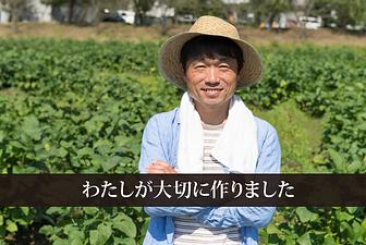ホームページ制作 島根