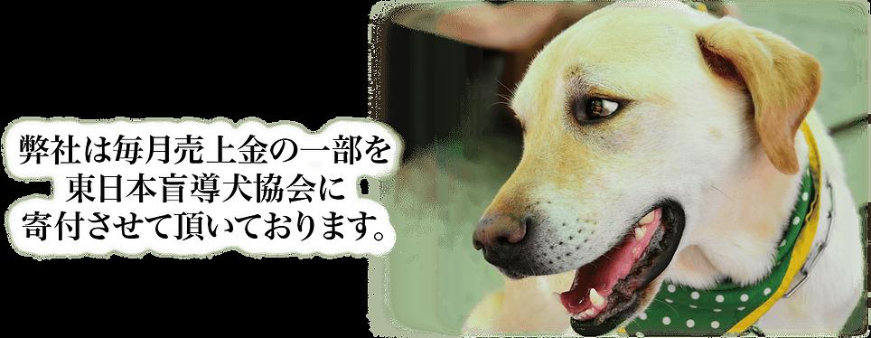 弊社は毎月売上金の一部を東日本盲導犬協会に