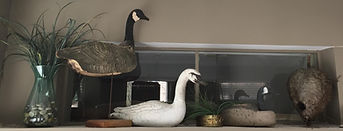 Duck decoys in the office of David Lee Wells