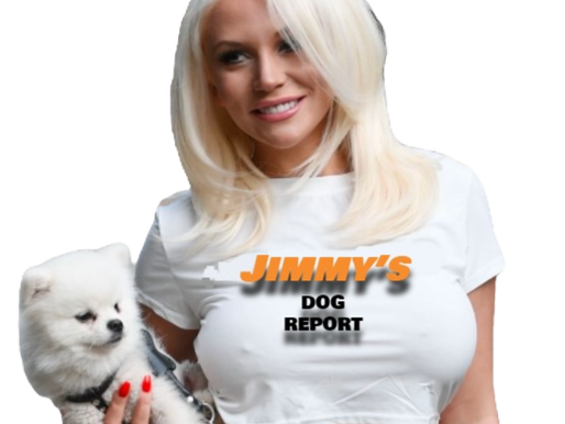 THE DOG REPORT - NCAA WK 8