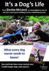 It's a Dog's Life dvd, Denise McLeod