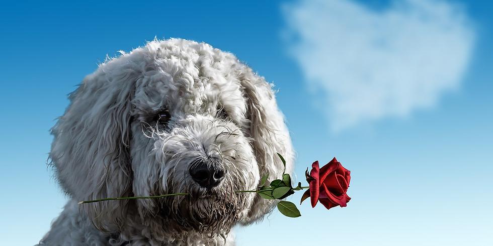 Valentine's Fun Day