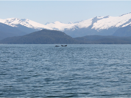 Alaska – ultima frontiera
