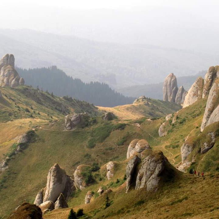 Toamna pe Vârful Ciucaș