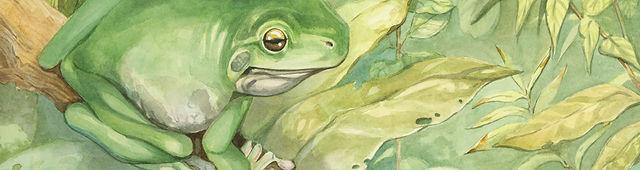 frog banner.jpg