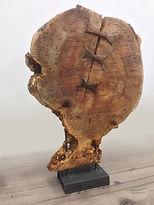 Paul Kruger Sculpture, art, fallen trees