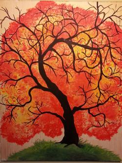 RPS Catalog_Majestic Autumn Maple