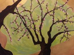 RPS Catalog_Reaching Cherry Blossoms