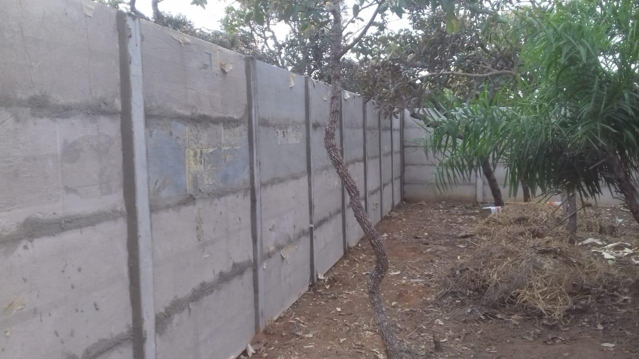 Muro paula.jpg