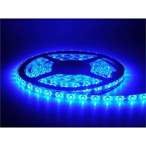 10 Fitas Led 5050 Ip65 300 Leds Azul 24v *