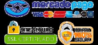 site-seguro-removebg-preview (1).png