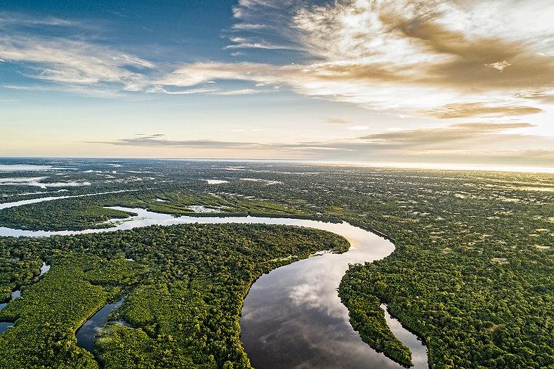 floresta-amazonia-2019.jpg
